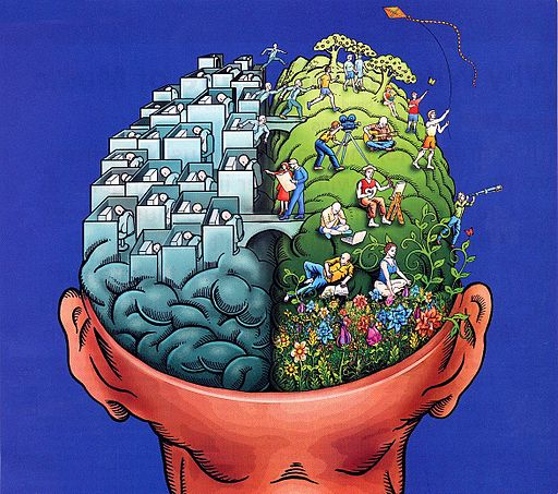 512px-Right_brain